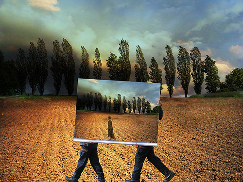 Cornelia Kopp - Looking for Reality