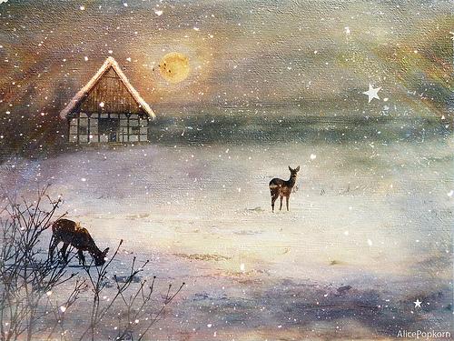 Cornelia Kopp - Winter Dream
